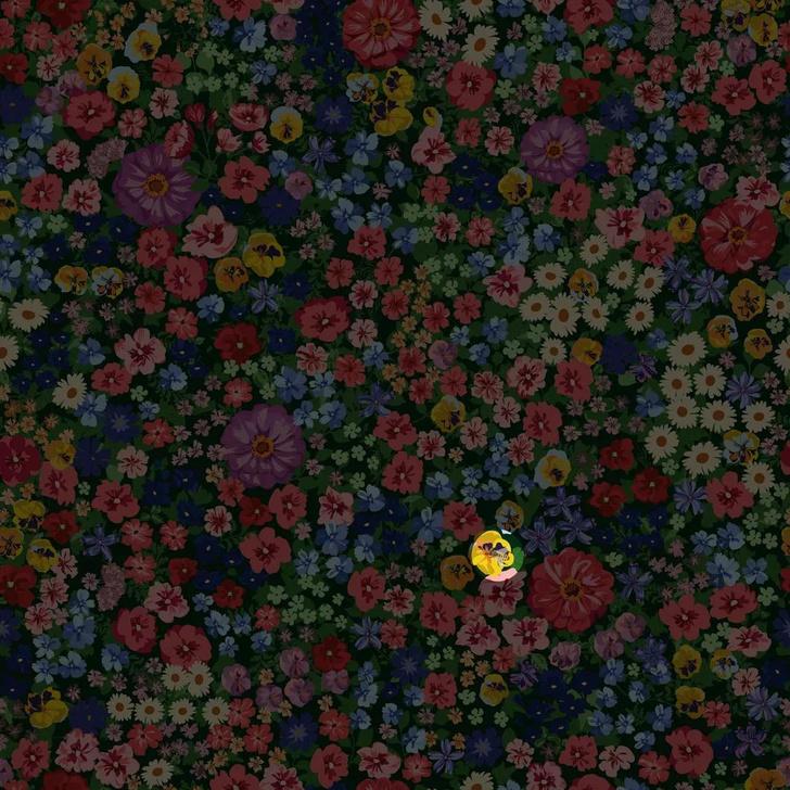 Фото №5 - Загадка только для проницательных: найди пчелу