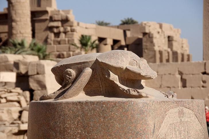 Фото №1 - Усы, лапы, хвост: 7 удивительных памятников животным