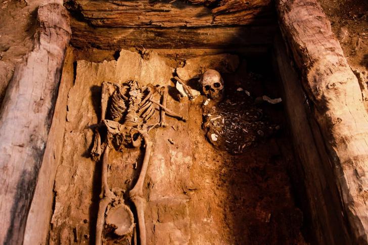 Фото №1 - Археологи нашли в Хакасии уникальное захоронение