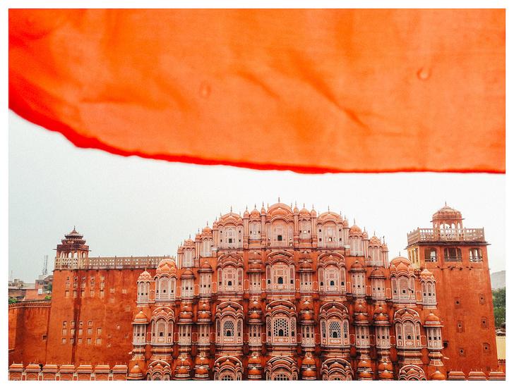 Фото №3 - Личный опыт: как уехать в Индию, чтобы помогать больным и бездомным