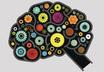Как работает мозг манипулятора?