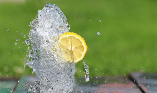 Фото №1 - Диетолог опроверг миф о пользе воды с лимоном натощак
