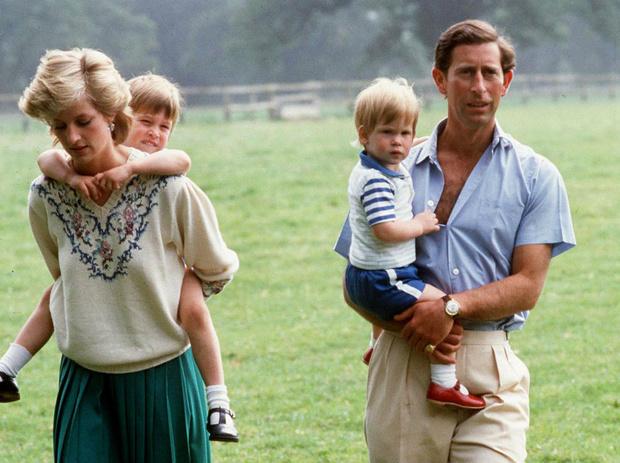 Фото №2 - Мама не одобряет: какое увлечение Уильяма ненавидела Диана