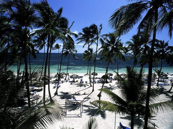 Фото №1 - 8 причин поехать в Доминикану