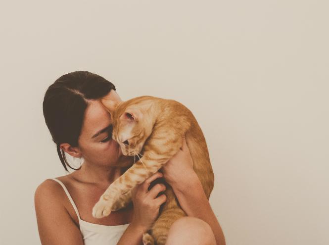 Фото №2 - 7 фактов о женщинах и кошках