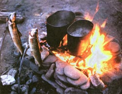 Фото №4 - Азартная охота в ленских заломах