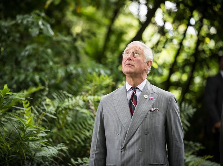 Фото №1 - Каким королем будет принц Чарльз (и почему он не уступит Уильяму)