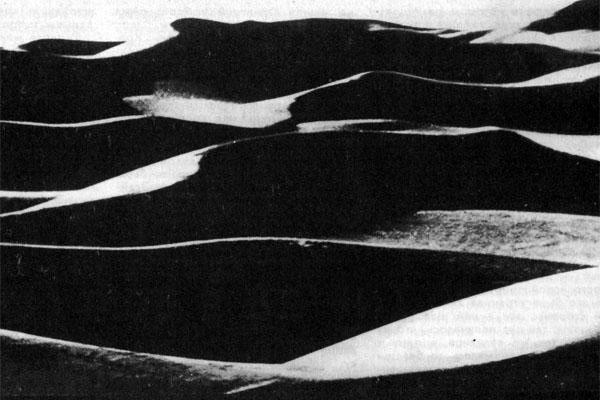 Фото №1 - На берегу океана Тетис