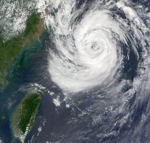 Фото №1 - В Шанхае эвакуировали 200 тыс. из-за угрозы тайфуна