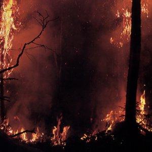 Фото №1 - Лесной пожар взорвал газовый склад в Апулии
