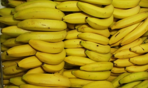 Фото №1 - Россельхознадзор: Человек не может заразиться «кровяной» болезнью бананов