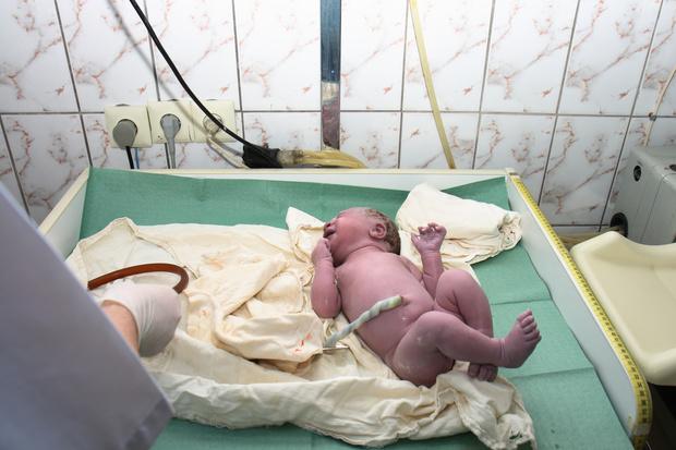 Фото №3 - Утерянное знание или опасный тренд? Что такое лотосовые роды и почему врачи против
