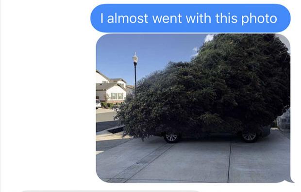 Фото №1 - Муж поехал покупать елку и потроллил жену фотографиями