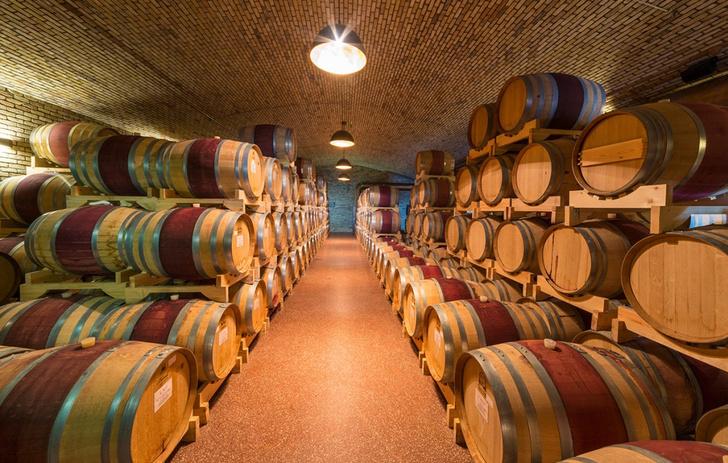 Фото №4 - Как устроена и работает одна из самых современных виноделен России