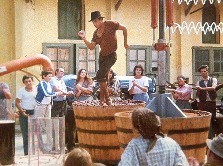 Фото №3 - Вино с приставкой «bio»: кто ввел тренд на биодинамические вина и где их искать