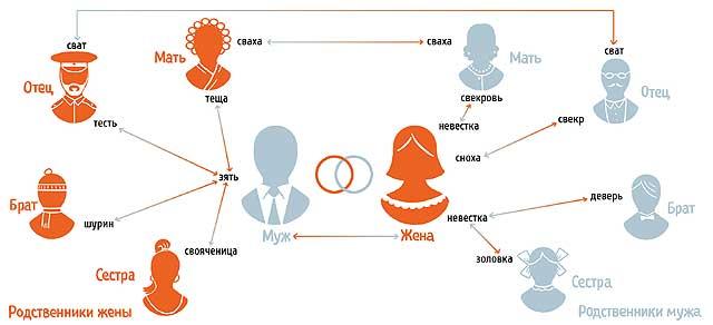Фото №1 - Кем приходятся друг другу родственники мужа и жены?