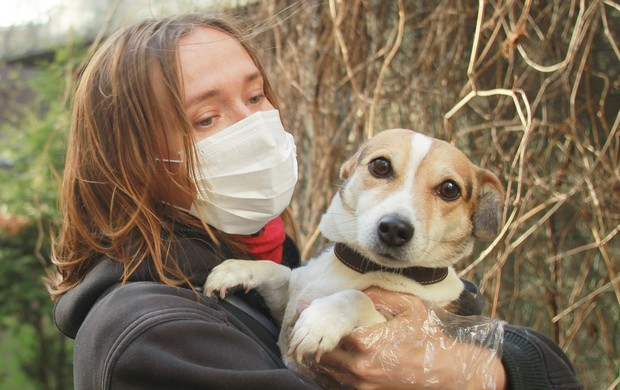 Фото №3 - Ученые обнаружили, что собаки могут определять, болеет ли человек коронавирусом