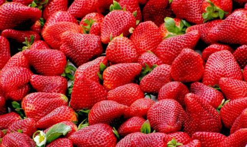 Фото №1 - Ягодный сезон: эксперты рассказали, кому нельзя есть клубнику