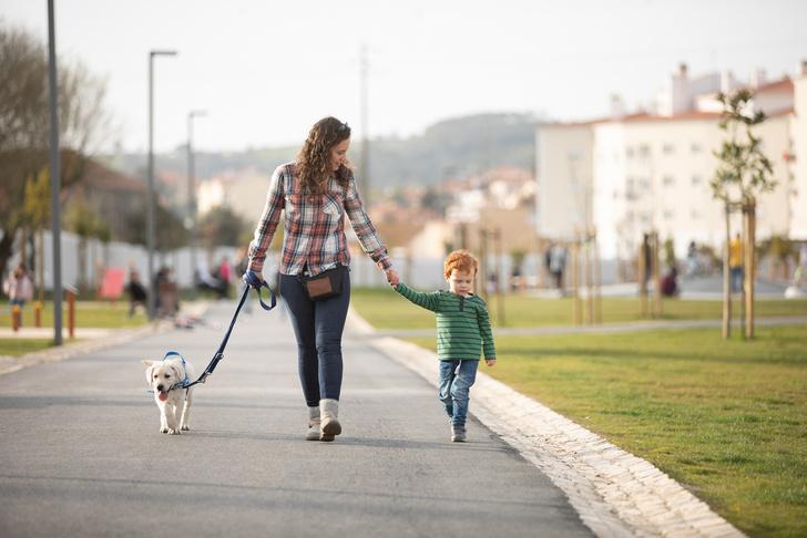 Ребенок убегает на прогулке что делать