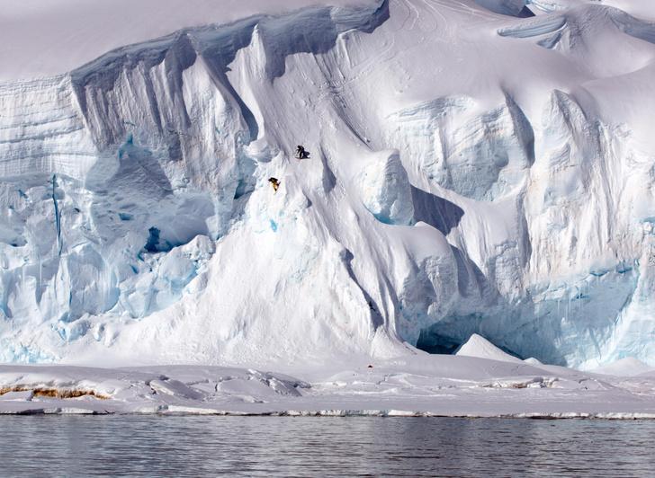 Фото №1 - Один кадр: Антарктида