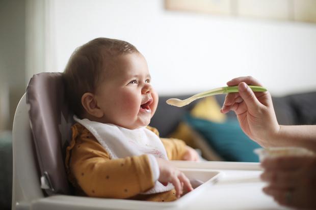 Фото №1 - Ученые посоветовали кормить младенцев яйцами и орехами— и вот почему