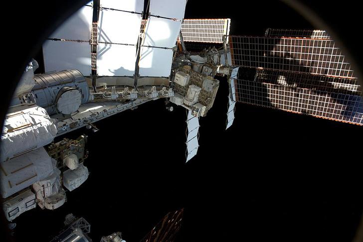 Фото №1 - На МКС попробуют вырастить человеческие ткани
