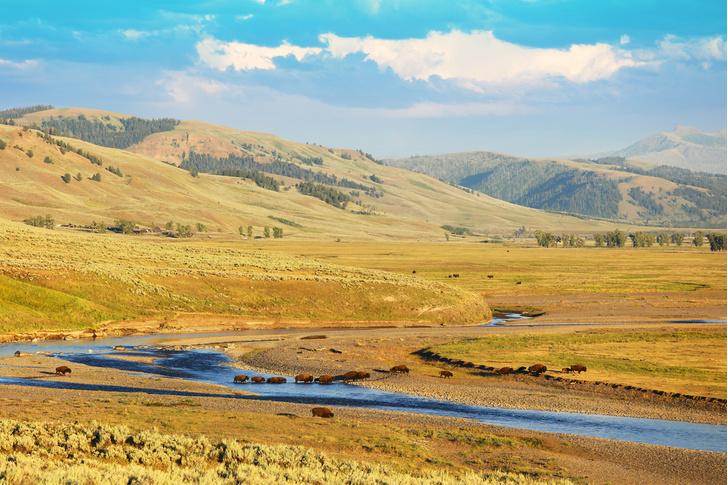 Фото №1 - Впадая в крайности: 10 самых необычных национальных парков на планете