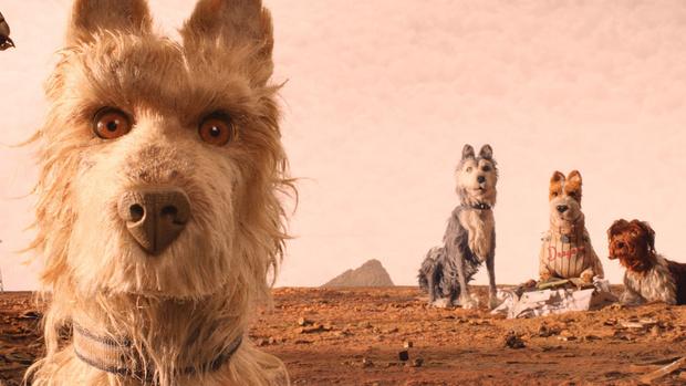 Фото №1 - VSCO выпустят три фильтра на основе мультика «Остров собак»
