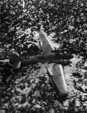 Фото №4 - Как первые советские авиарекордсменки 10 дней выживали в тайге