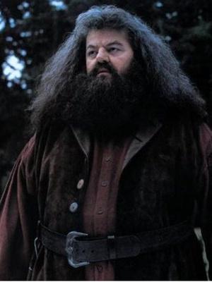 Фото №3 - Комиксы в Хогвартсе: какими супергероями были бы персонажи «Гарри Поттера»