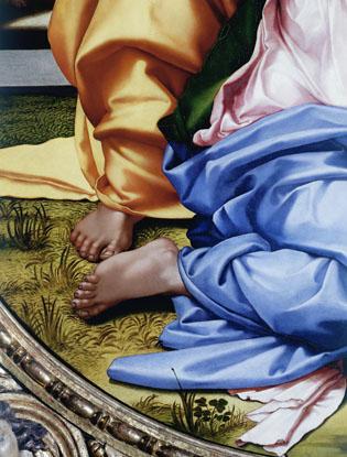 Фото №12 - Что вы могли не знать о Микеланджело Буонарроти