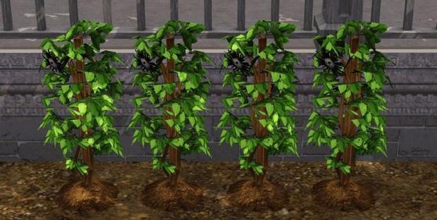 Фото №4 - Play Time: Как быстро и без читов заработать кучу денег в The Sims 4