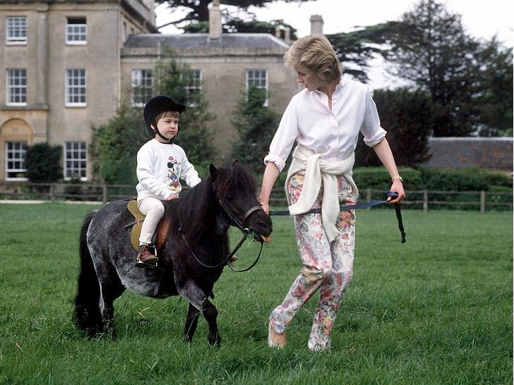 Фото №5 - Королевское хобби, которое Джордж и Шарлотта переняли у Елизаветы II
