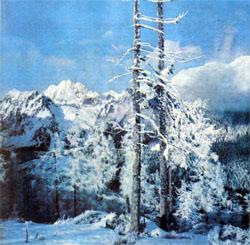 Фото №4 - Партизанские горы