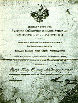 Фото №4 - Наследник генерала Епанчина