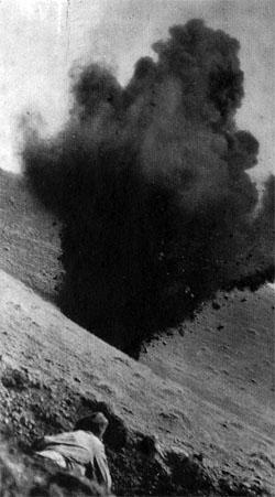 Фото №4 - Эхо Курской битвы