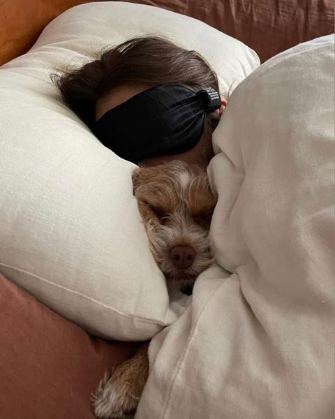 Фото №6 - Самые милые собачки в мире: фото и видео, после которых ты захочешь завести щеночка