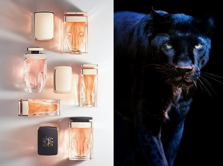 Фото №1 - Аромат дня: La Panthère Limited Edition от Cartier