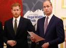 Последний рубеж: как Гарри и Уильям делят наследие принцессы Дианы