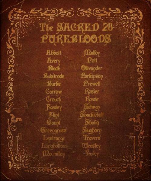 Фото №4 - Джоан Роулинг написала дополнение к «Гарри Поттеру»
