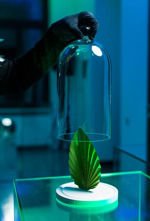Фото №4 - Фантастические молекулы и где они обитают: аромат Aura Mugler
