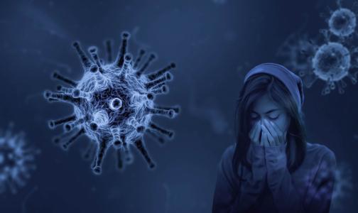 Фото №1 - Представители Минздрава едут в Петербург из-за критической ситуации с коронавирусом