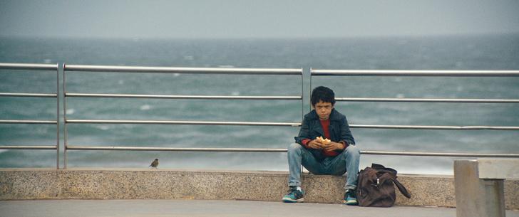 Фото №7 - Обязательно к просмотру: 5 фильмов о культуре Ближнего Востока и Северной Африки