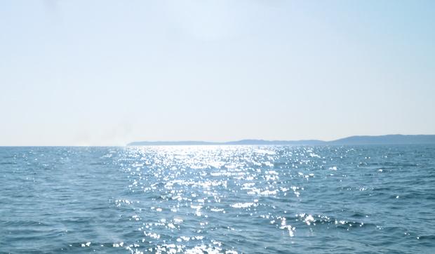 Фото №1 - «Голубое сердце»: как бьюти-бренды отмечают Всемирный день океанов
