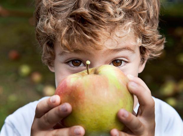 Фото №2 - Как приучить ребенка к здоровой еде