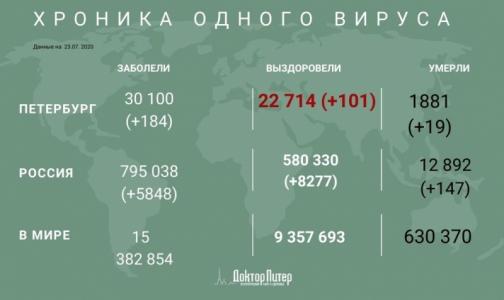 Фото №1 - Число заразившихся коронавирусом петербуржцев превысило 30 тысяч