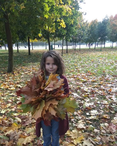 Фото №6 - Детский фотоконкурс «Собираем гербарий»: выбирай лучшее фото