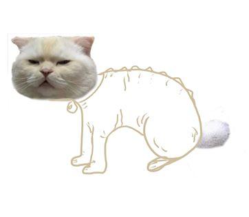 Фото №16 - В Интернете дорисовывают кота: 13 лучших вариаций