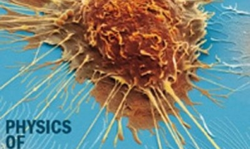 Фото №1 - Американец предложил новую теорию возникновения рака, сравнив его с «безопасным режимом» Windows
