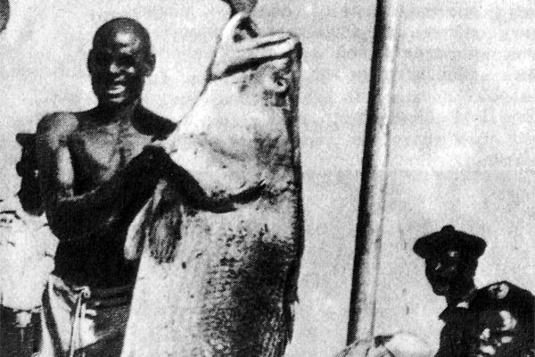 Фото №1 - Рыбалка близ Сахары